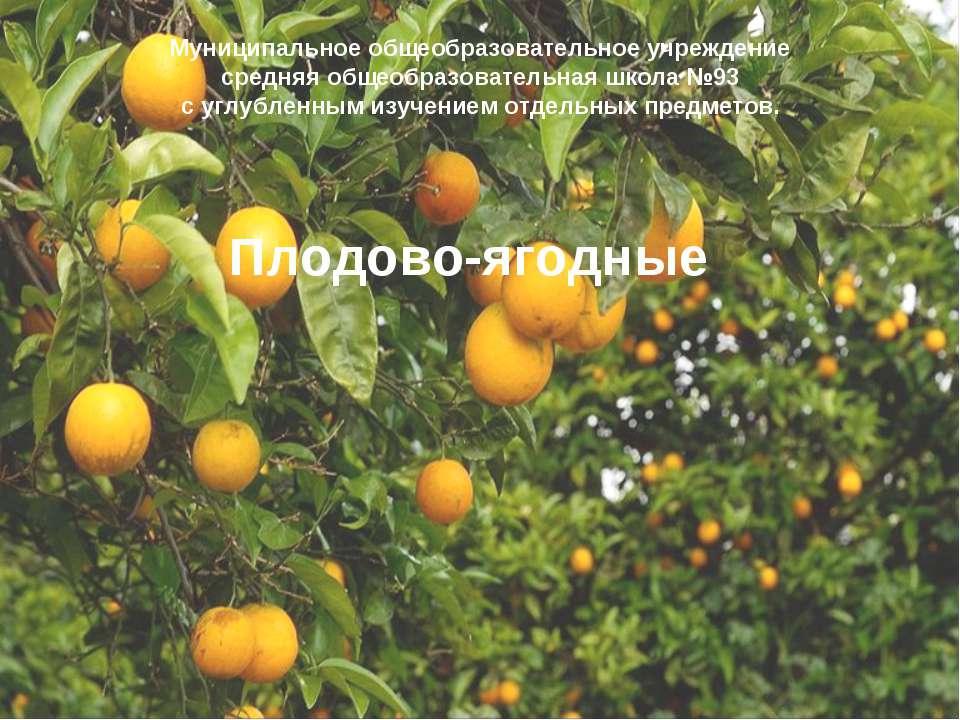 Плодово-ягодные Муниципальное общеобразовательное учреждение средняя общеобра...