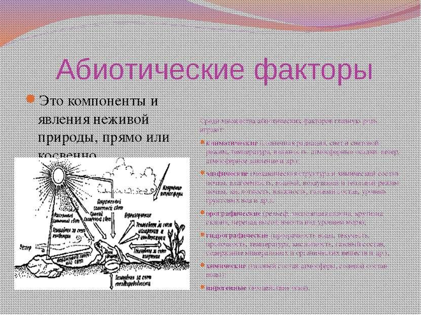 Абиотические факторы Это компоненты и явления неживой природы, прямо или кос...