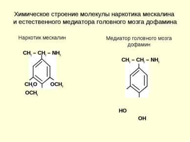 Химическое строение молекулы наркотика мескалина и естественного медиатора го...