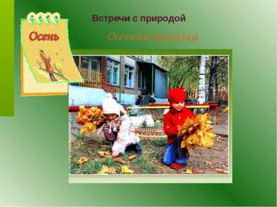 Встречи с природой Осенняя прогулка