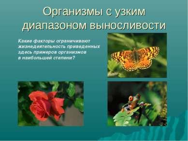 Организмы с узким диапазоном выносливости Какие факторы ограничивают жизнедея...