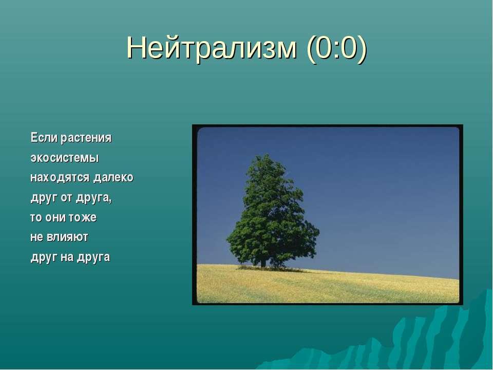 Нейтрализм (0:0) Если растения экосистемы находятся далеко друг от друга, то ...