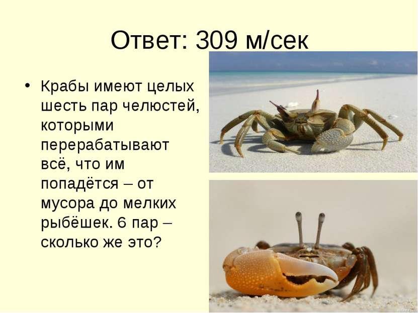 Ответ: 309 м/сек Крабы имеют целых шесть пар челюстей, которыми перерабатываю...