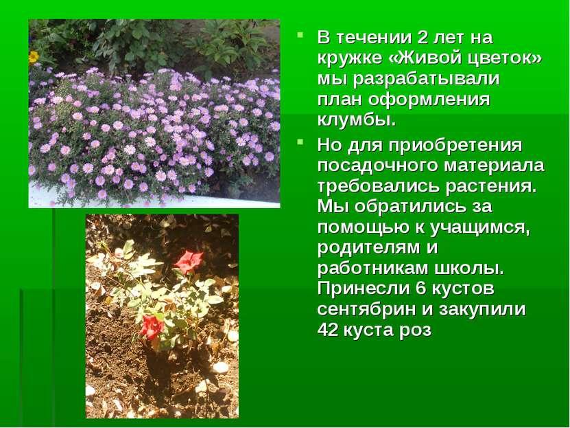 В течении 2 лет на кружке «Живой цветок» мы разрабатывали план оформления клу...