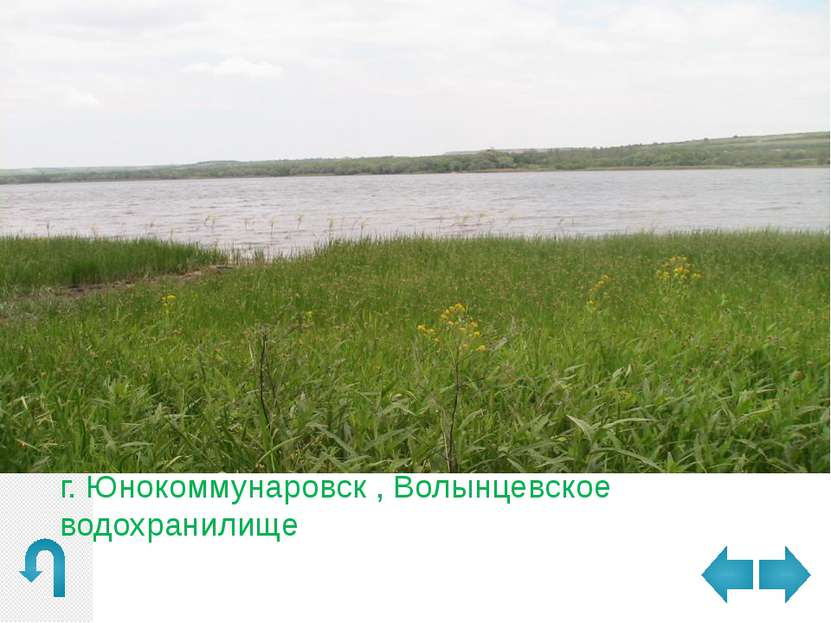 г. Юнокоммунаровск , Божковский ставок