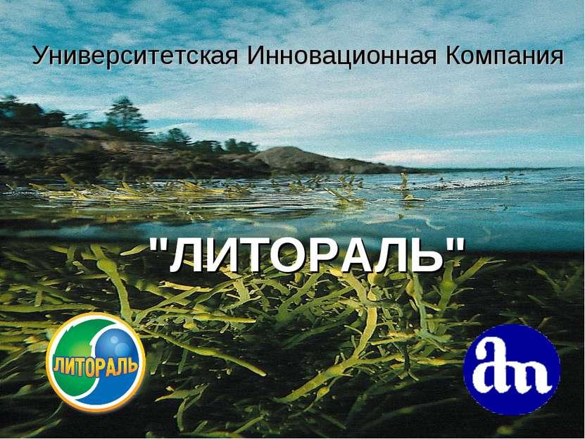 """Университетская Инновационная Компания """"ЛИТОРАЛЬ"""""""