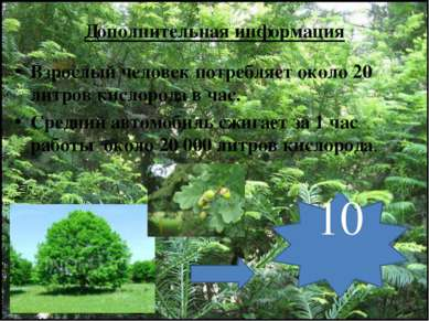 Дополнительная информация Взрослый человек потребляет около 20 литров кислоро...