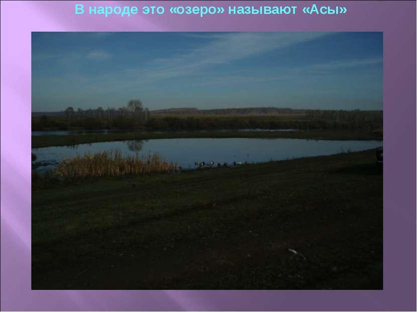В народе это «озеро» называют «Асы»