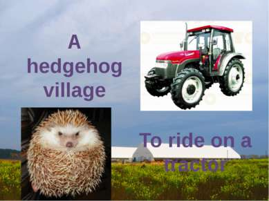 A hedgehog village To ride on a tractor