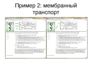 Пример 2: мембранный транспорт