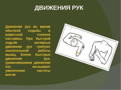ДВИЖЕНИЯ РУК Движения рук во время обычной ходьбы в известной степени пассивн...