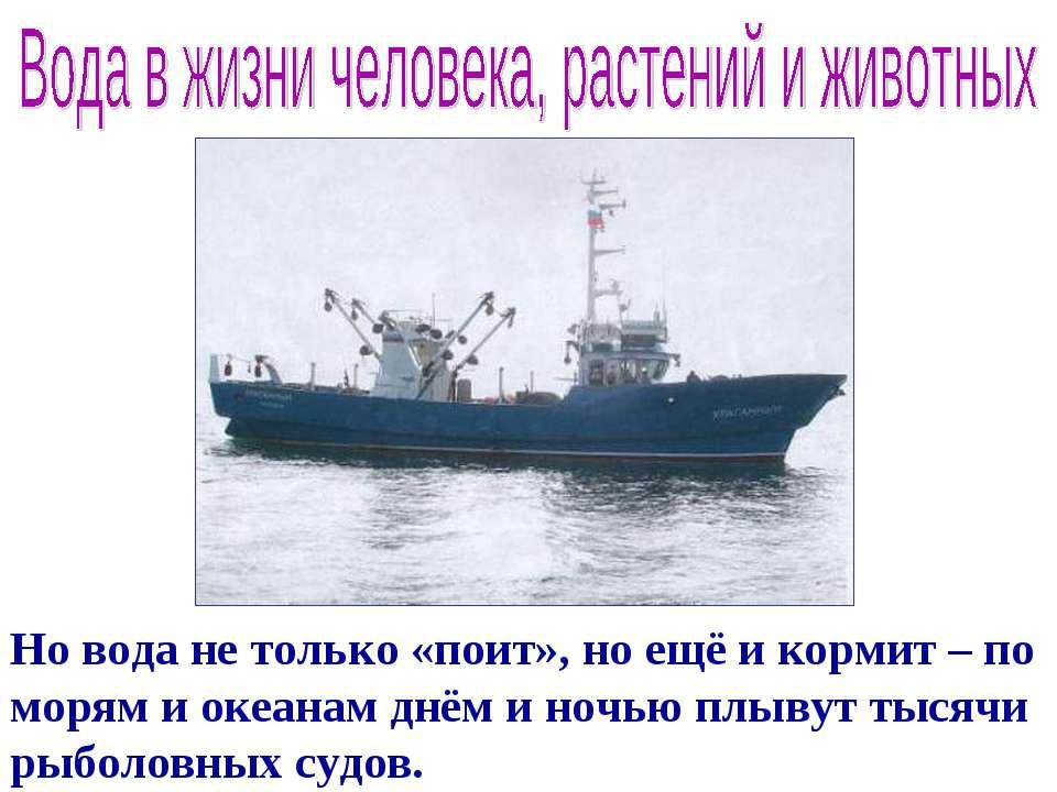 Но вода не только «поит», но ещё и кормит – по морям и океанам днём и ночью п...