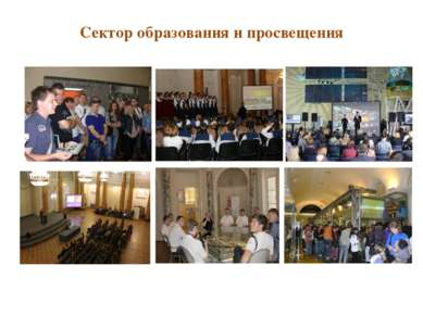 Сектор образования и просвещения