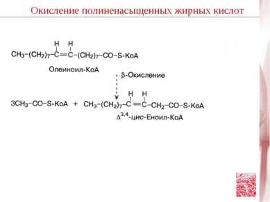 Окисление полиненасыщенных жирных кислот