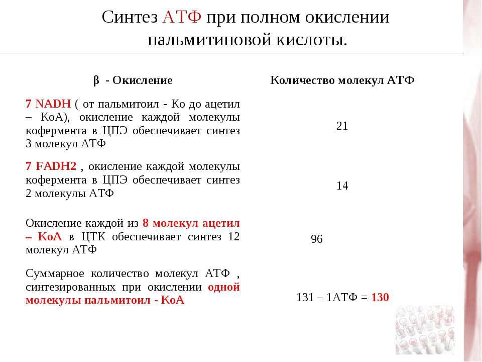 Синтез АТФ при полном окислении пальмитиновой кислоты. β - Окисление Количест...