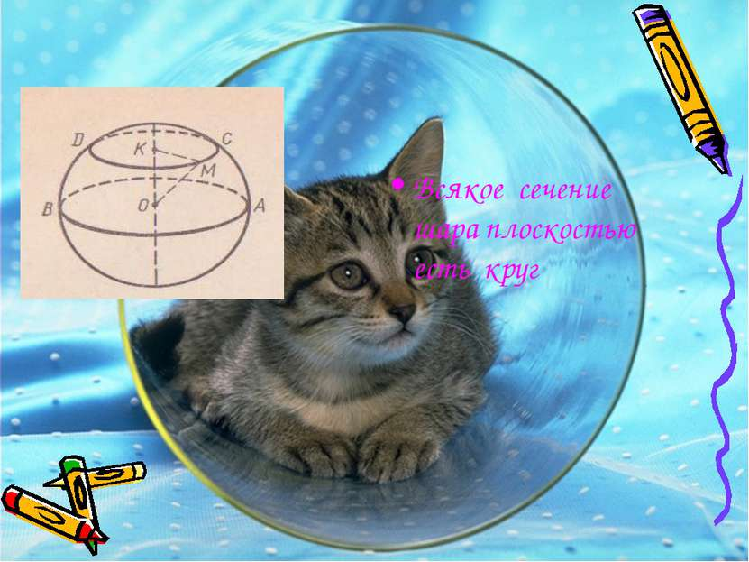 Всякое сечение шара плоскостью есть круг