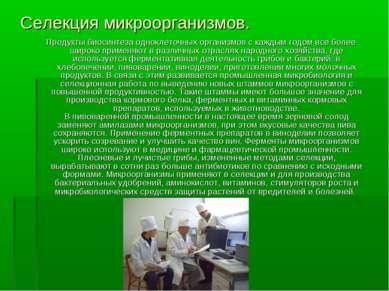 Селекция микроорганизмов. Продукты биосинтеза одноклеточных организмов с кажд...