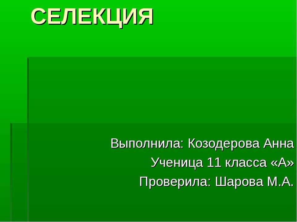 СЕЛЕКЦИЯ Выполнила: Козодерова Анна Ученица 11 класса «А» Проверила: Шарова М.А.