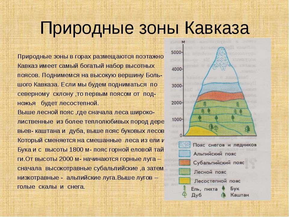 Природные зоны Кавказа Природные зоны в горах размещаются поэтажно. Кавказ им...
