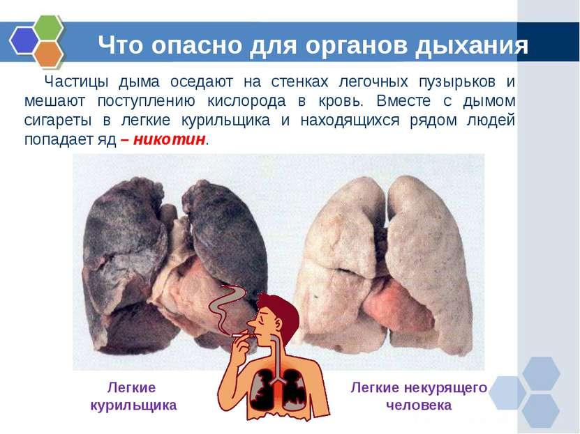 Что опасно для органов дыхания Частицы дыма оседают на стенках легочных пузыр...