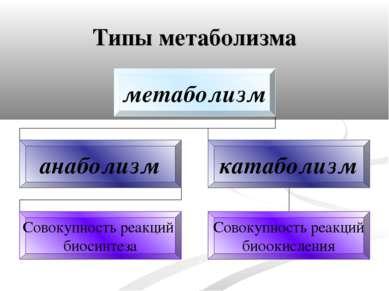 Типы метаболизма