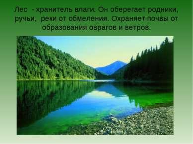 Лес - хранитель влаги. Он оберегает родники, ручьи, реки от обмеления. Охраня...