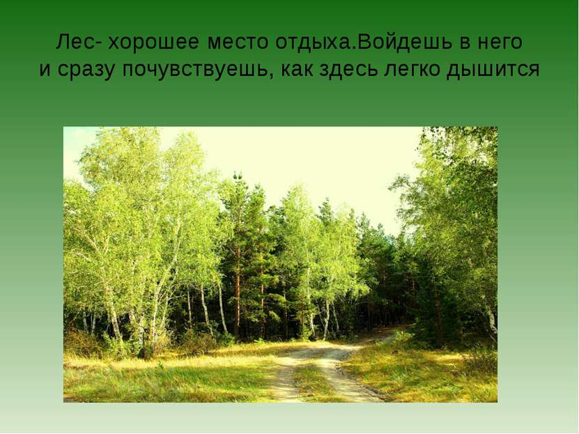 Лес- хорошее место отдыха.Войдешь в него и сразу почувствуешь, как здесь легк...