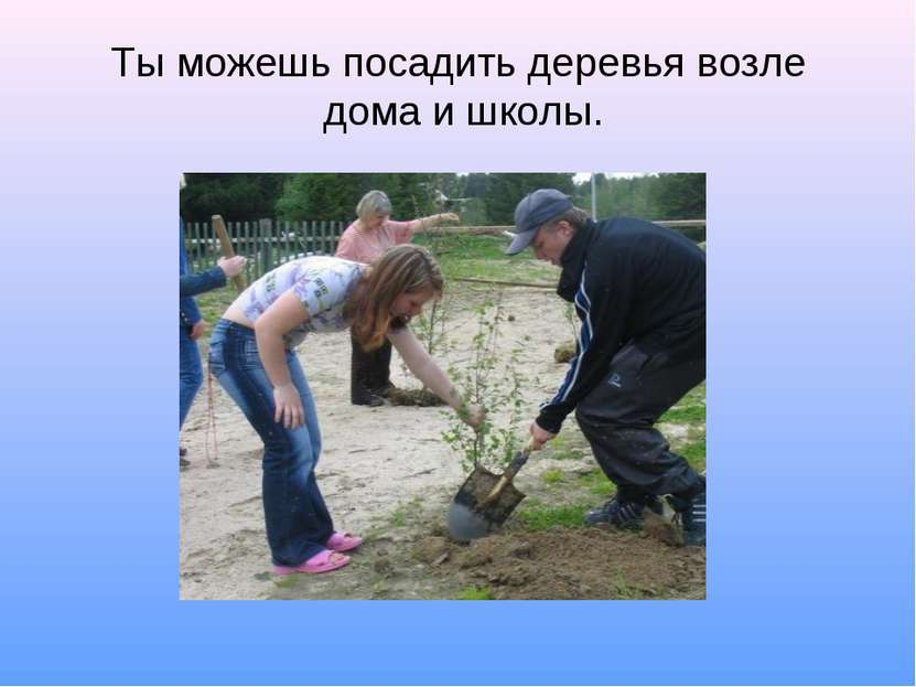 Ты можешь посадить деревья возле дома и школы.