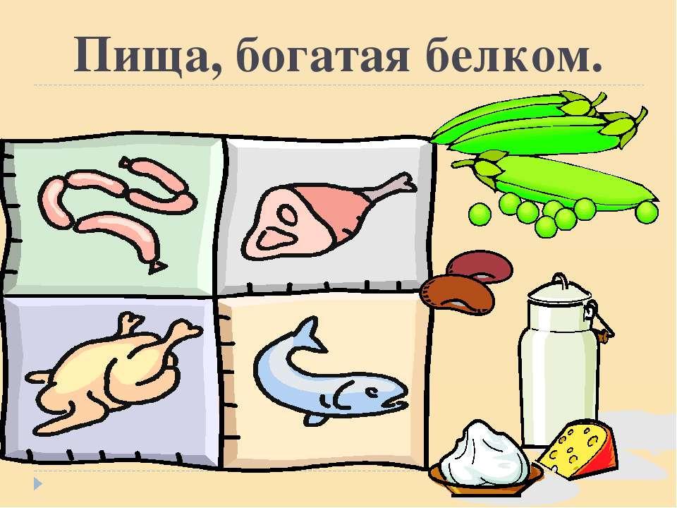 Пища, богатая белком.