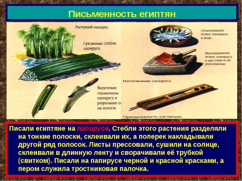 Письменность египтян Писали египтяне на папирусе. Стебли этого растения разде...