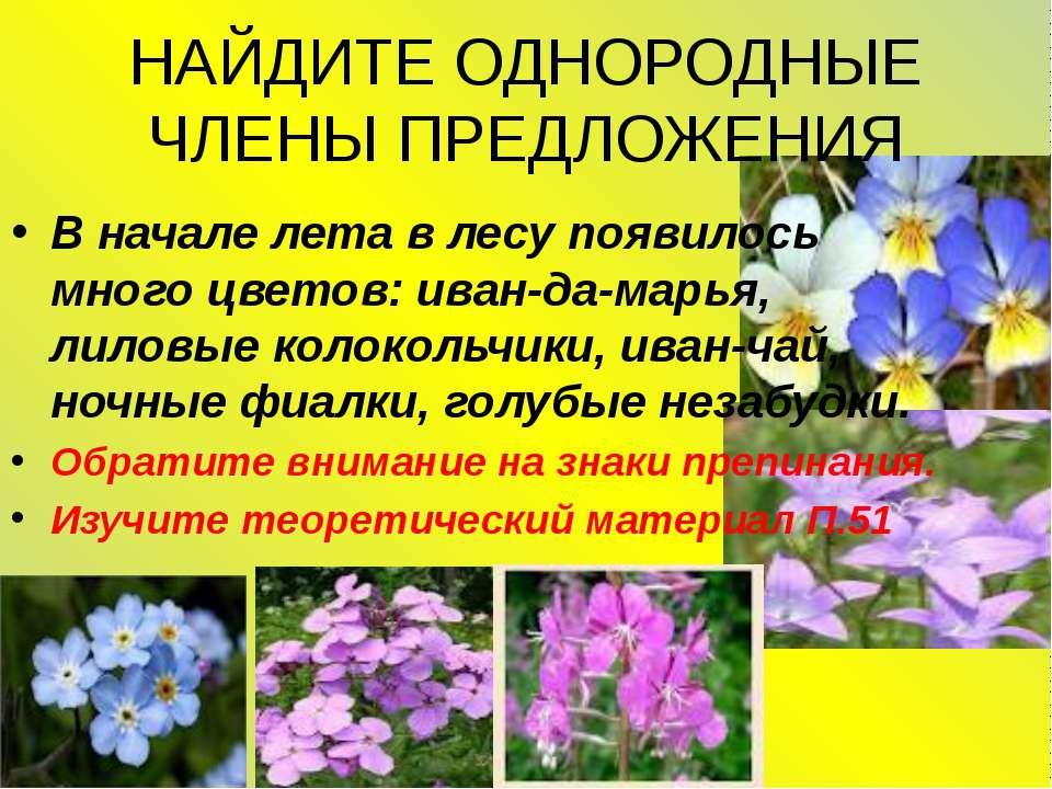 НАЙДИТЕ ОДНОРОДНЫЕ ЧЛЕНЫ ПРЕДЛОЖЕНИЯ В начале лета в лесу появилось много цве...