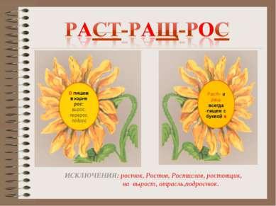 Раст- и ращ- всегда пишем с буквой а ИСКЛЮЧЕНИЯ: росток, Ростов, Ростислав, р...