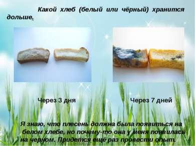Какой хлеб (белый или чёрный) хранится дольше. Через 3 дня Через 7 дней Я зна...