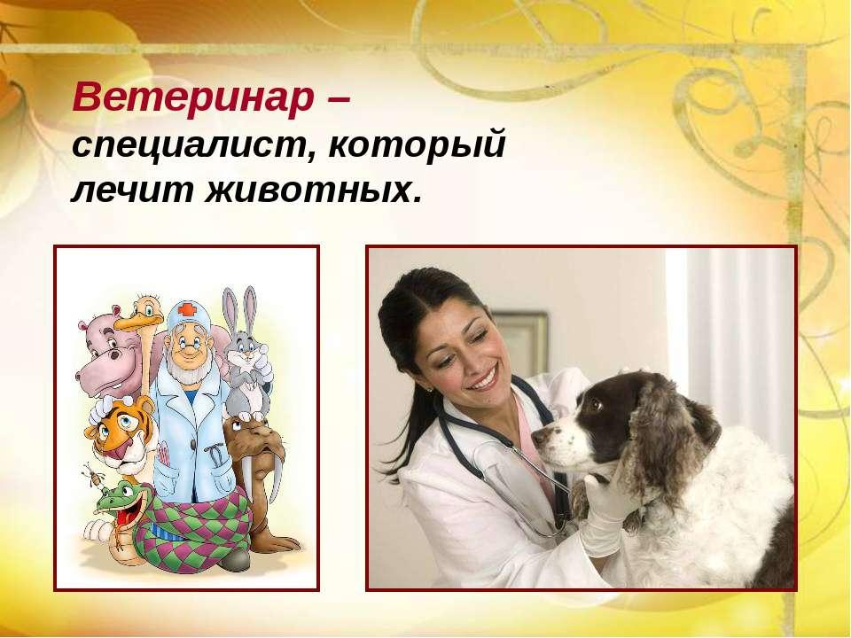 Ветеринар – специалист, который лечит животных.