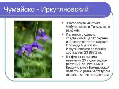Чумайско - Иркутяновский Расположен на стыке Чебулинского и Тисульского район...