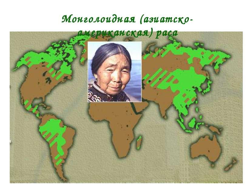 * Монголоидная (азиатско-американская) раса