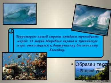 Территорию нашей страны омывает тринадцать морей: 12 морей Мирового океана и ...