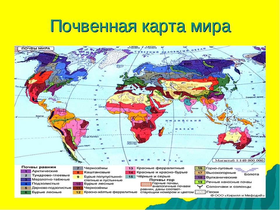 Почвенная карта мира
