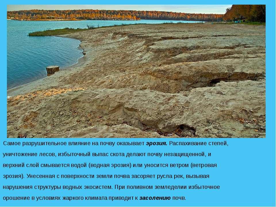 Самое разрушительное влияние на почву оказывает эрозия. Распахивание степей, ...