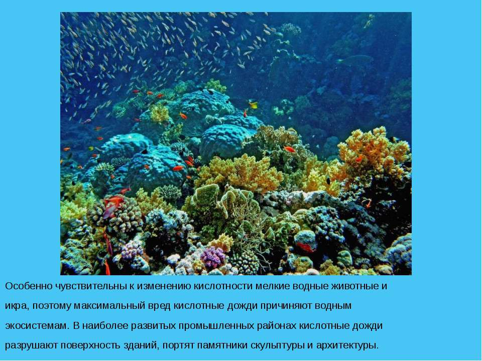 Особенно чувствительны к изменению кислотности мелкие водные животные и икра,...