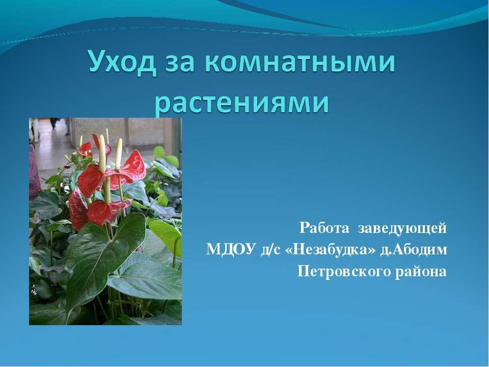 Работа заведующей МДОУ д/с «Незабудка» д.Абодим Петровского района