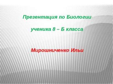 Презентация по Биологии ученика 8 – Б класса Мирошниченко Ильи