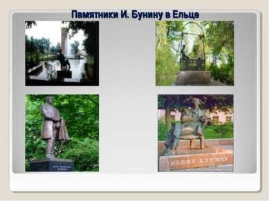 Памятники И. Бунину в Ельце