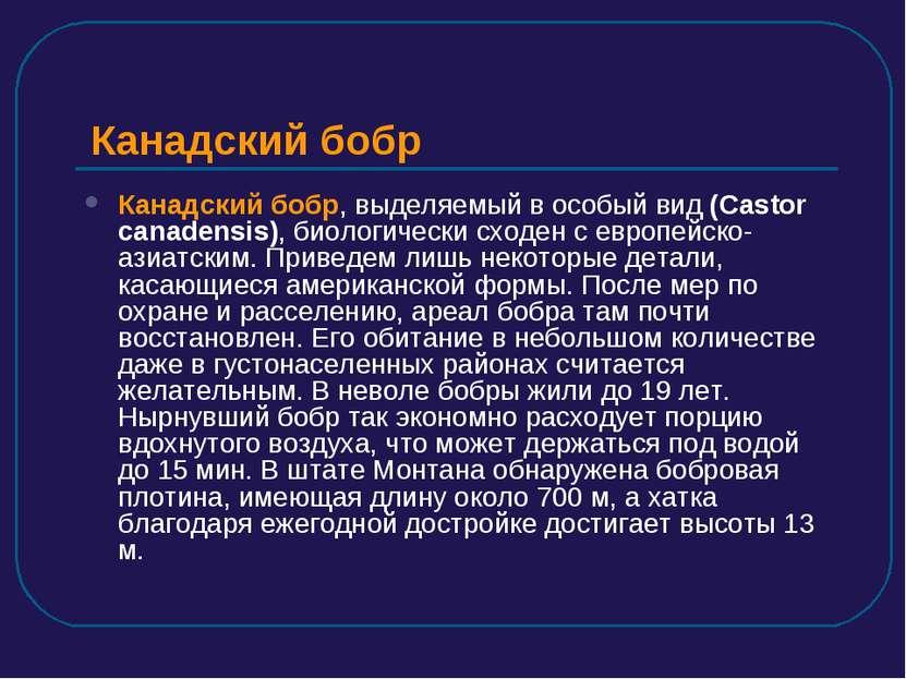 Канадский бобр Канадский бобр, выделяемый в особый вид (Castor canadensis), б...