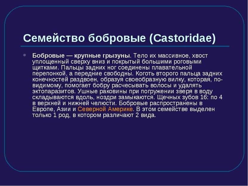 Семейство бобровые (Castoridae) Бобровые — крупные грызуны. Тело их массивное...