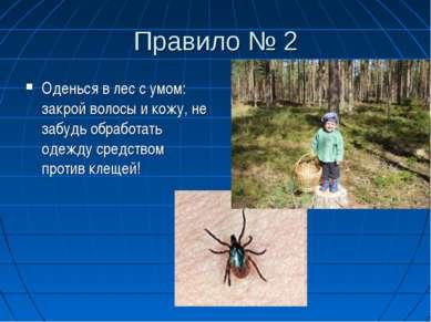 Правило № 2 Оденься в лес с умом: закрой волосы и кожу, не забудь обработать ...