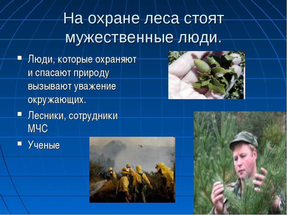 На охране леса стоят мужественные люди. Люди, которые охраняют и спасают прир...