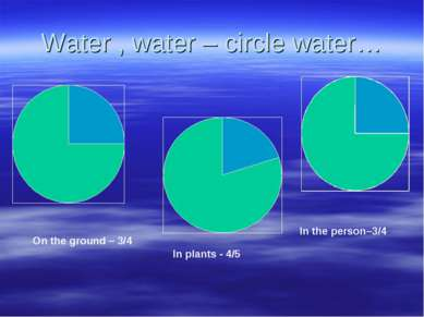 Water , water – circle water… On the ground – 3/4 In plants - 4/5 In the pers...