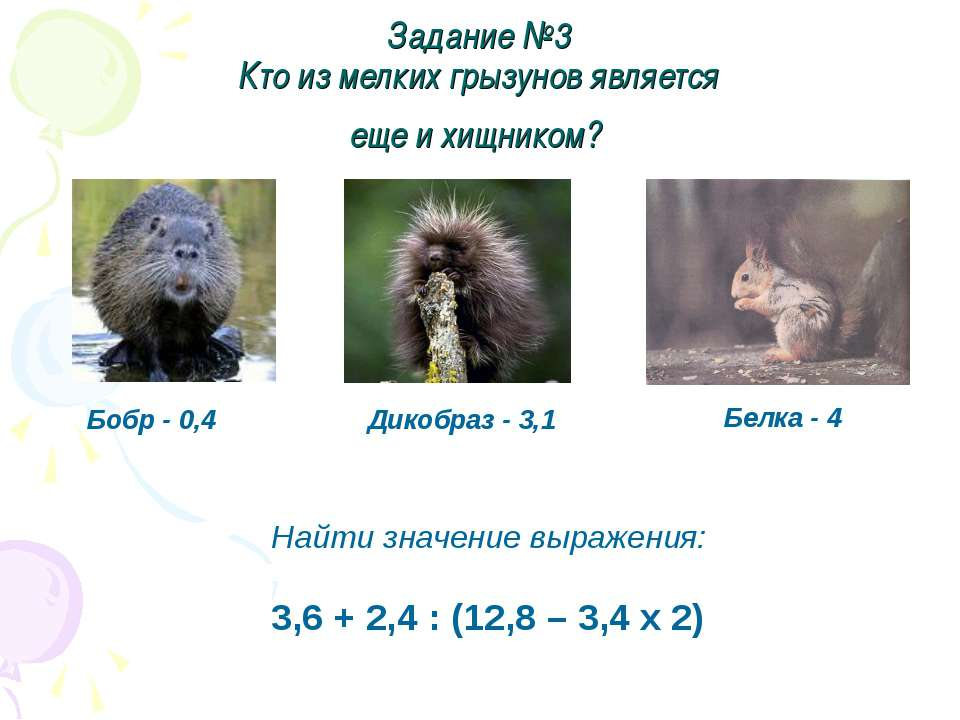Задание №3 Кто из мелких грызунов является еще и хищником? Бобр - 0,4 Дикобра...