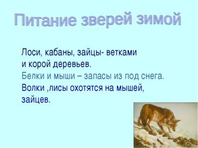 Волки, лисы охотятся на мышей, зайцев Лоси, кабаны, зайцы- ветками и корой де...
